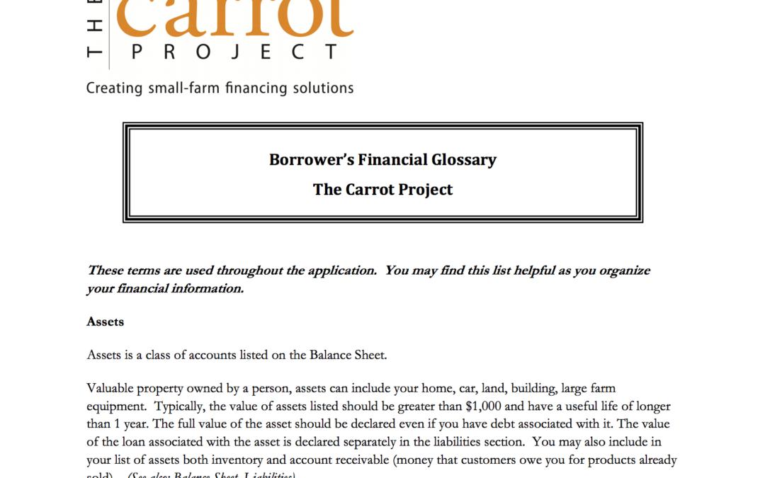 Borrower's Financial Glossary
